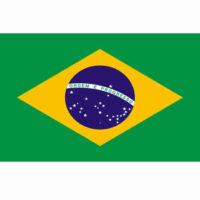Vlag Brazilië BR 100x150cm