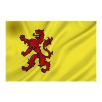Vlag Zuid Holland ZH 100x150cm