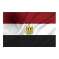 vlag Egypte 100x150cm